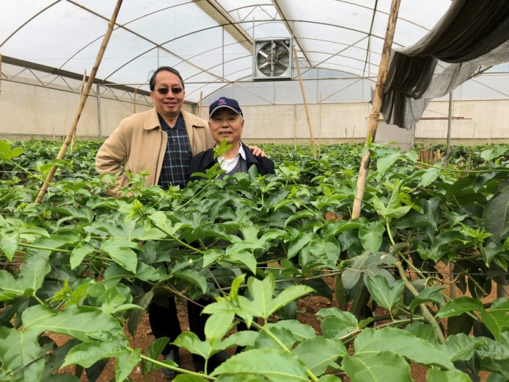 Prof. Yeh and Prof. Chang visited the virus-free passion fruit seedlings nursery of NaFoods.
