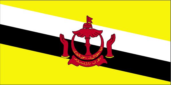 汶萊的國旗圖片