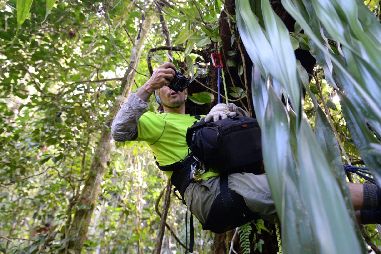 圖說,在野地拍攝植物照片紀錄