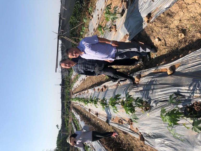 葉錫東教授與河內植物保護研究院植病系主任Dr. Ta Hoang An合影